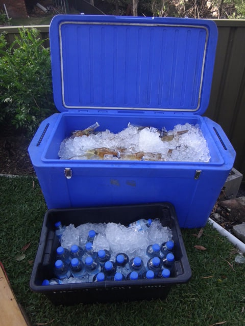 150Litre Ice Chest