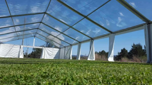 Marquee pegged on grass clear at Camden